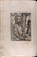 Portrait of Vesalius