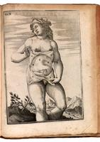 Pregnant woman, fetus and chorion